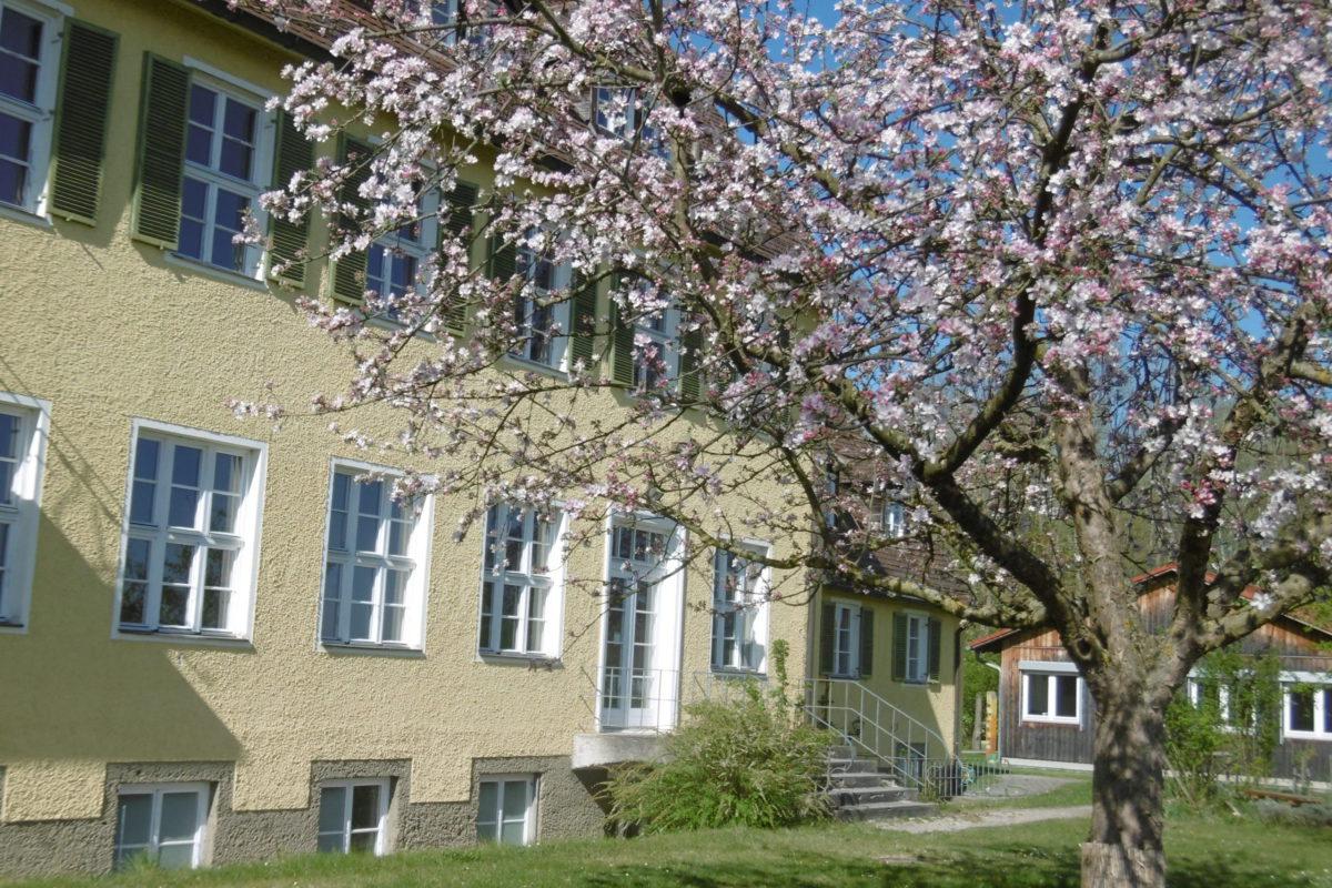 Frühlingszauber in Starkheim